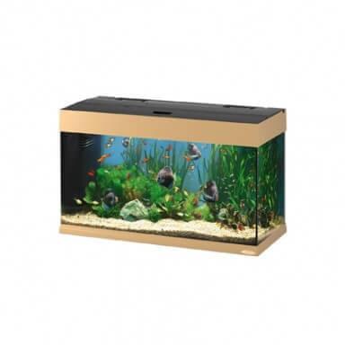 Aquarium dubai 80 125l aquarium de 101 400 litres for Aquarium 80 litres