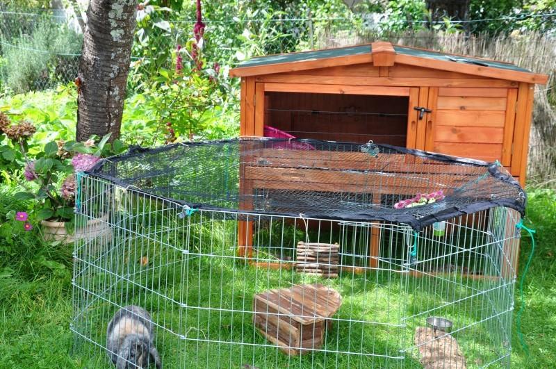Clapier petits animaux avec cour ext rieure couleur for Abri lapin exterieur