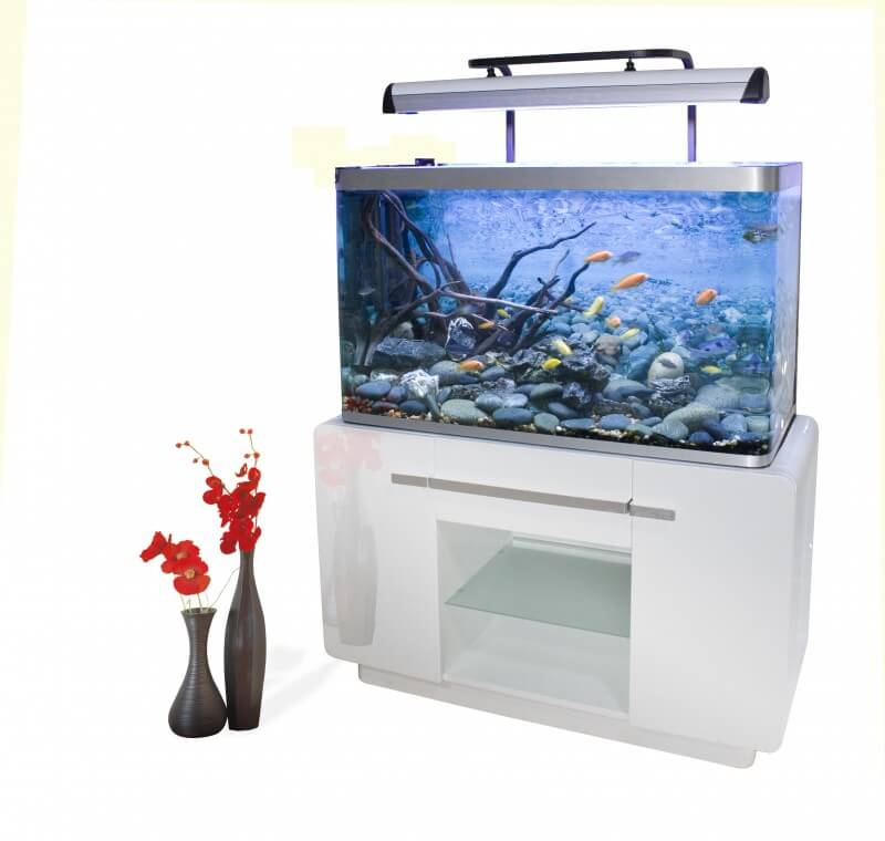 Aquarium osaka 320 310l blanc glossy white avec meuble for Aquarium avec meuble