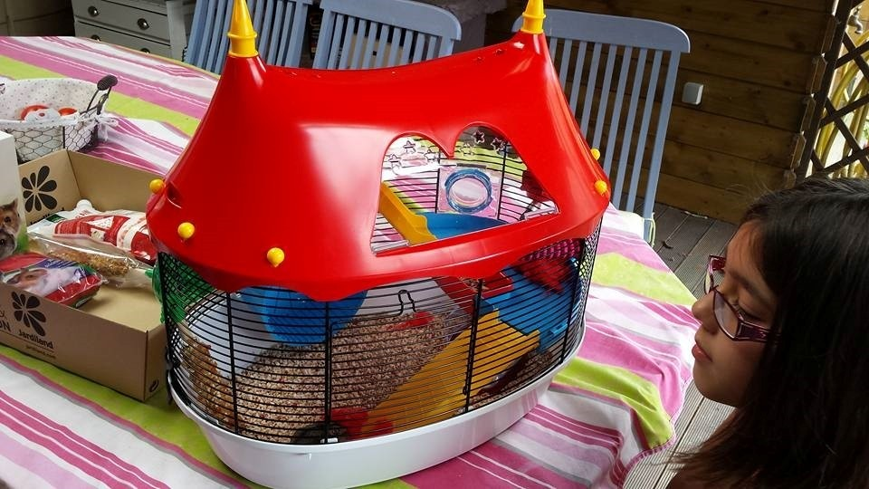Cage petits rongeurs circus fun cage hamster - La plus grande cage a hamster du monde ...