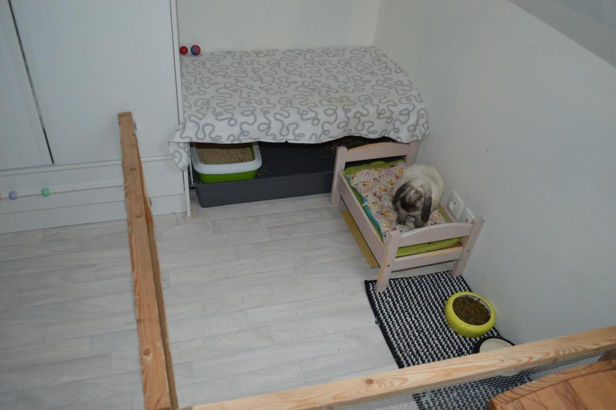 Cage ferplast rabbit 100 pour lapin et cochon d 39 inde cage cochon d 39 inde - Fabriquer cage cochon d inde ...