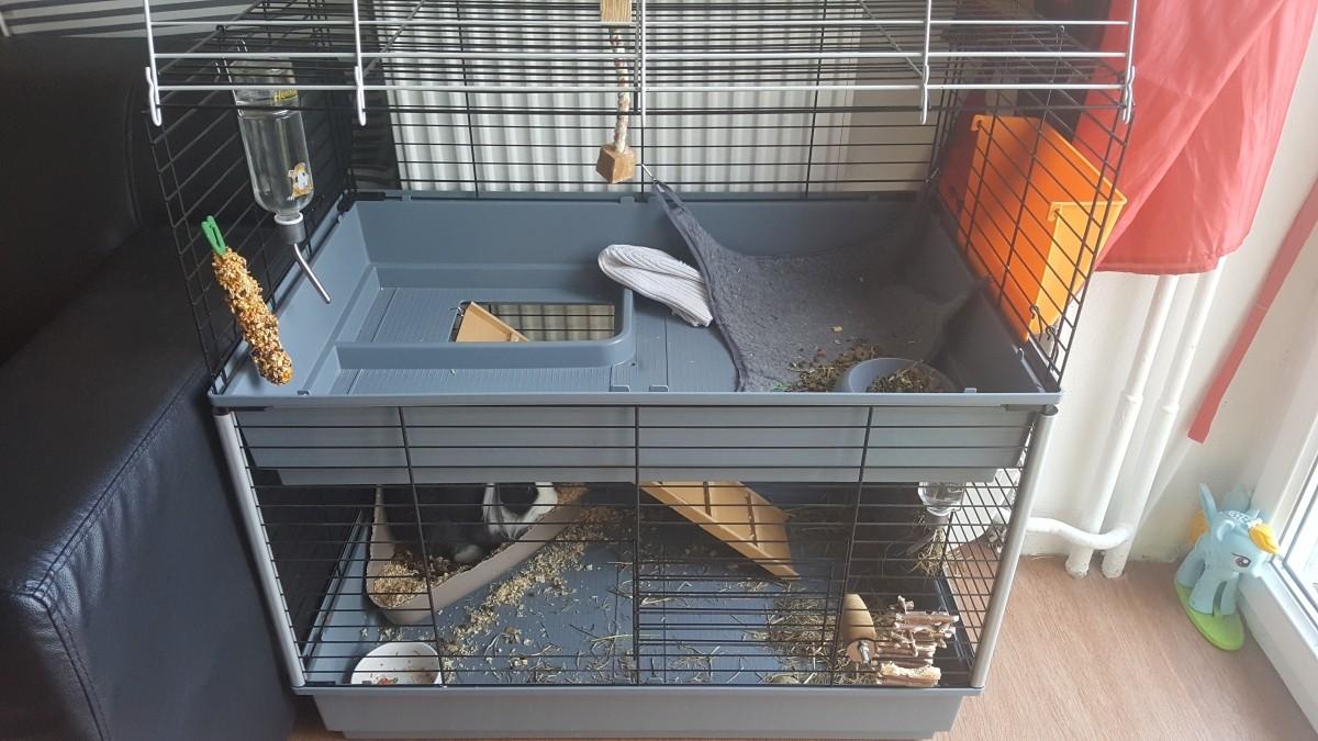 cage ferplast cavie 80 double pour lapin et cobaye cage. Black Bedroom Furniture Sets. Home Design Ideas