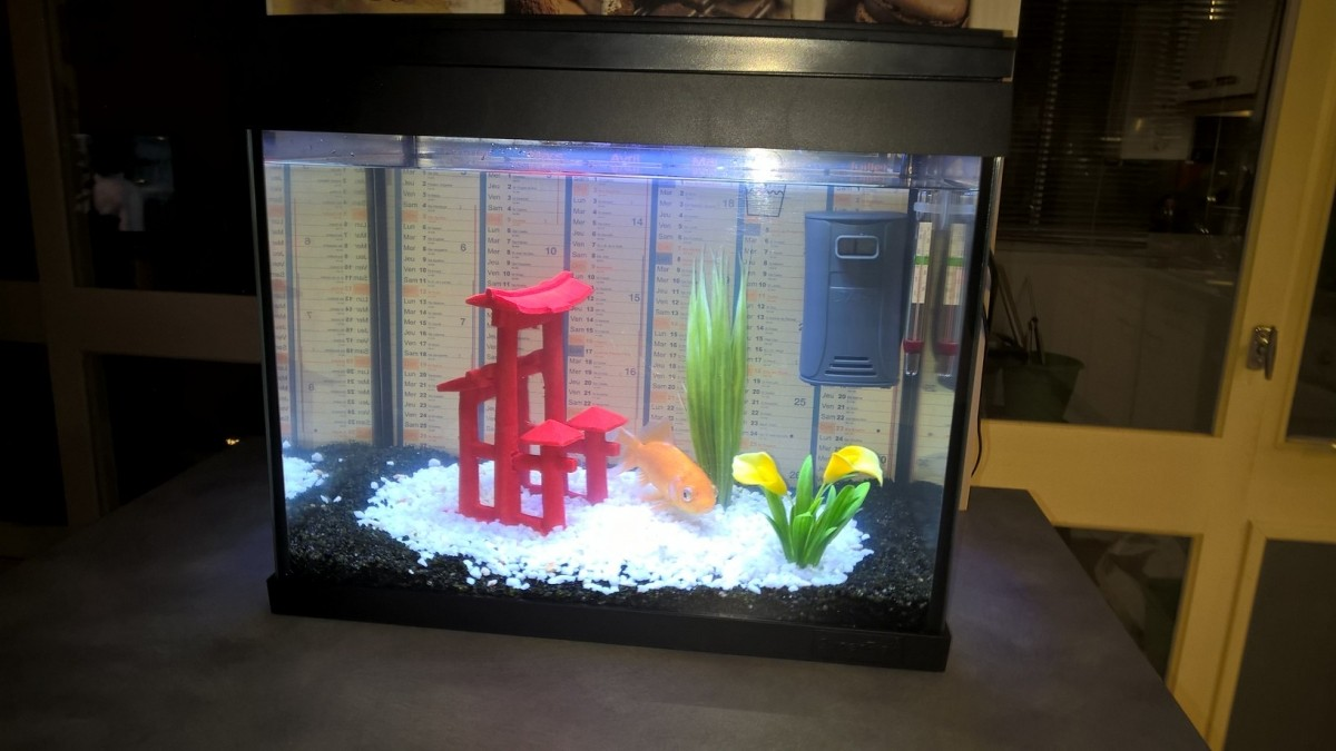 Acheter aquarium poisson rouge for Acheter bocal a poisson