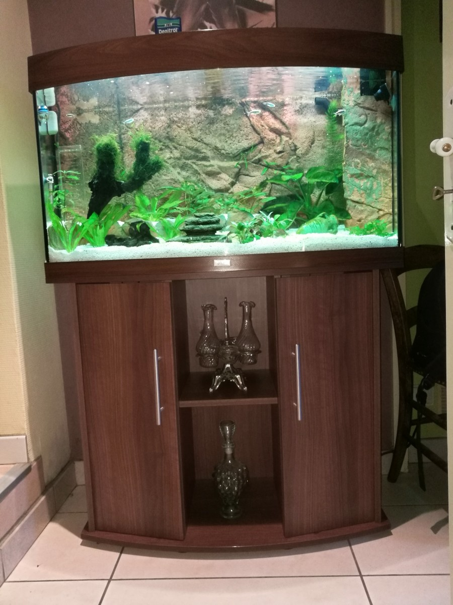 Meuble Vision Brun Aquarium Et Meuble # Meubles Sur Roulettes Pour Aquarium
