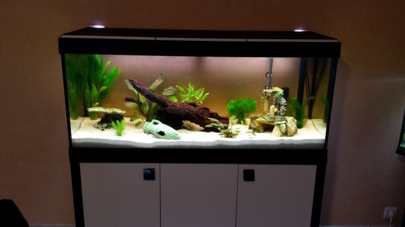 Meuble aquarium fait maison for Meuble aquarium design