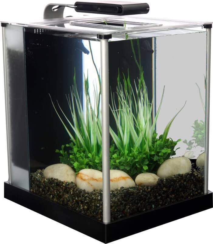 aquarium fluval spec 3 10 litres aquarium de 0 100 litres. Black Bedroom Furniture Sets. Home Design Ideas