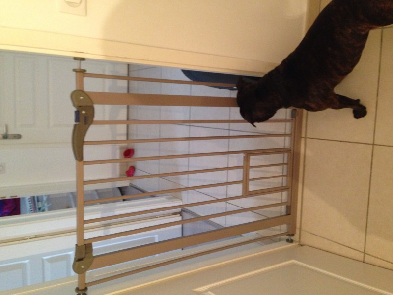 barriere pour chien dog barriere avec petite porte barri re et escalier. Black Bedroom Furniture Sets. Home Design Ideas