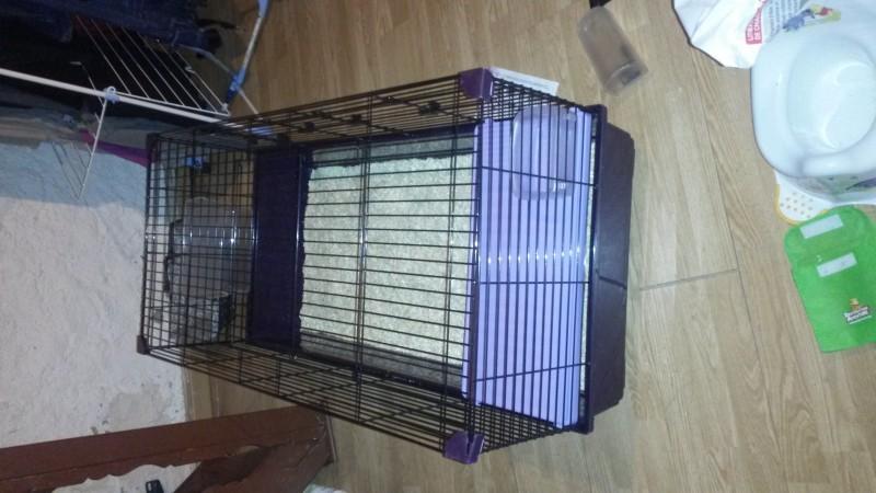 cage lapin grande taille. Black Bedroom Furniture Sets. Home Design Ideas