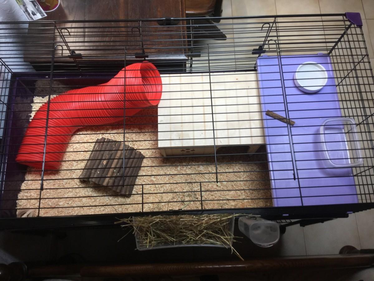 cage pour lapins et cochons d 39 inde robin 120 cm violette. Black Bedroom Furniture Sets. Home Design Ideas