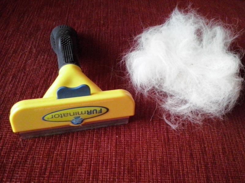 brosse furminator pour chiens poils courts 5 tailles. Black Bedroom Furniture Sets. Home Design Ideas