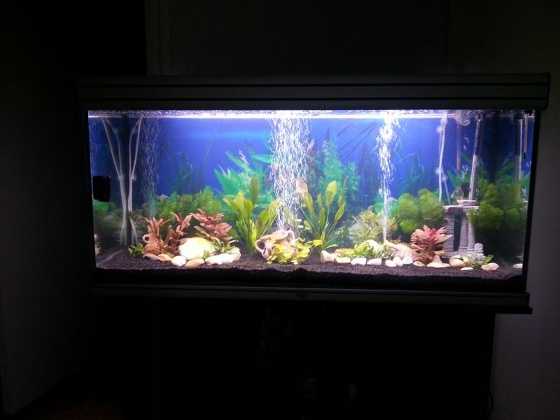 Poster pour aquarium 3d - Fond aquarium 3d ...