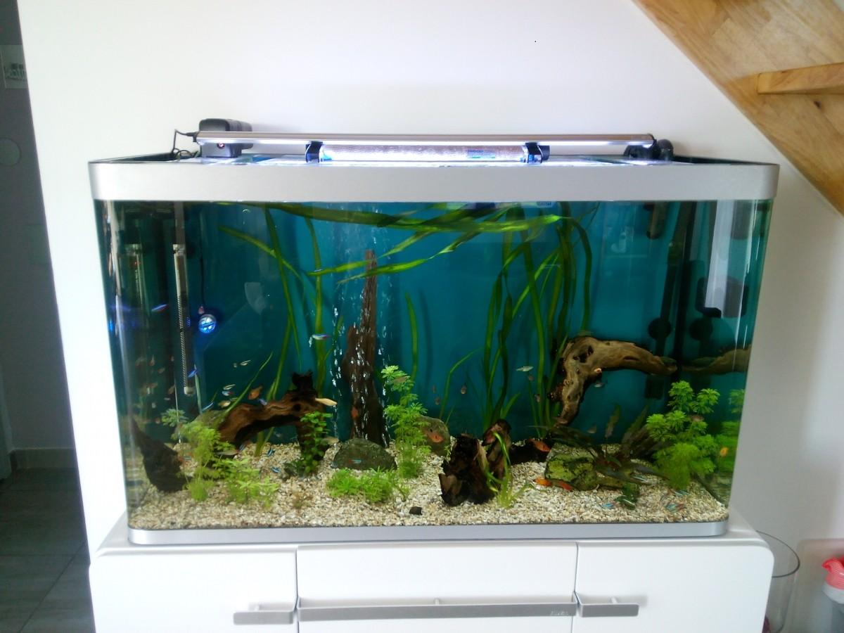 Aquarium osaka 260 244l marron cuve nue aquarium et meuble for Aquarium osaka 260