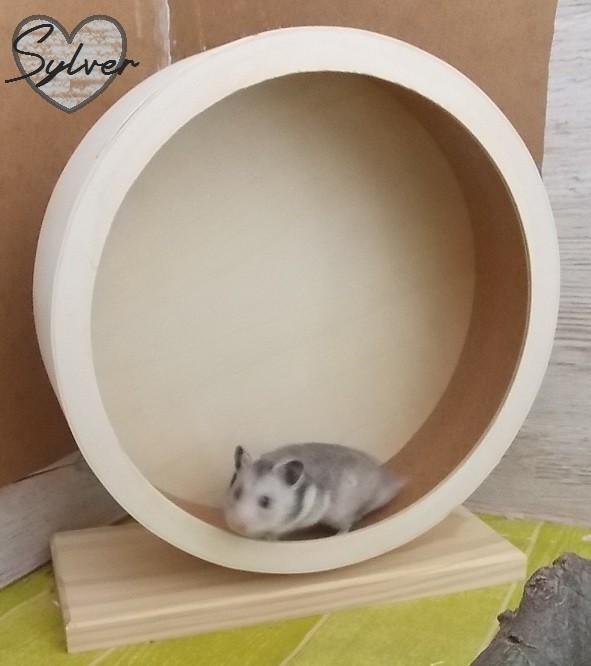 roue silencieuse en bois et li ge bogie wheel jouet rongeur. Black Bedroom Furniture Sets. Home Design Ideas