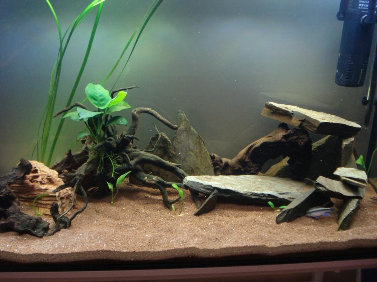 jbl manado substrat naturel pour aquarium substrat et engrais plante