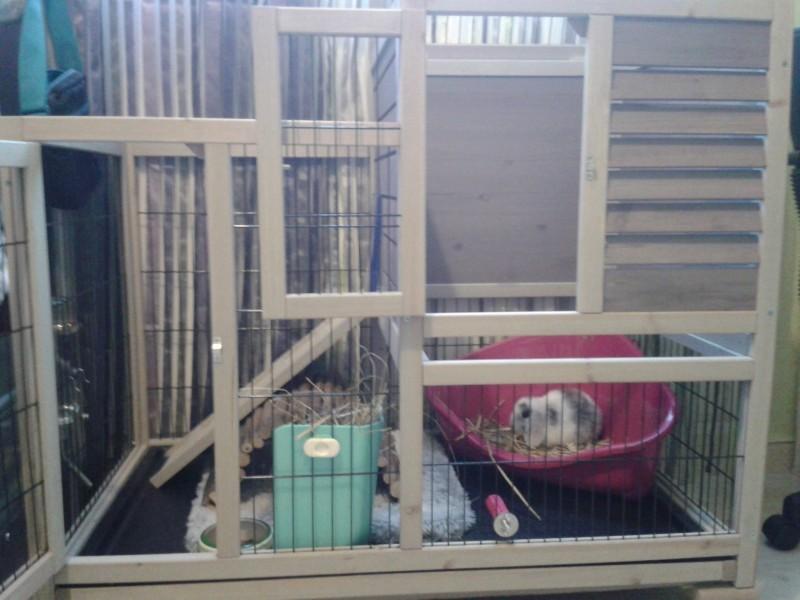 Clapier d 39 int rieur restland cage lapin clapier lapin for Enclos lapin interieur