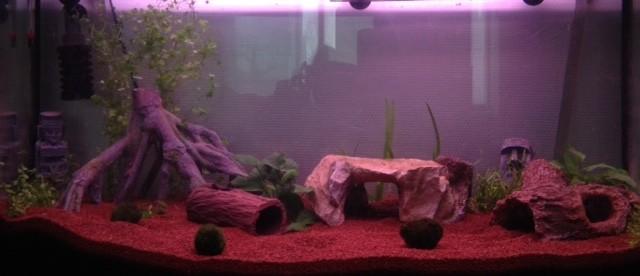 Deco quartz aquarium - Decoration pour aquarium ...