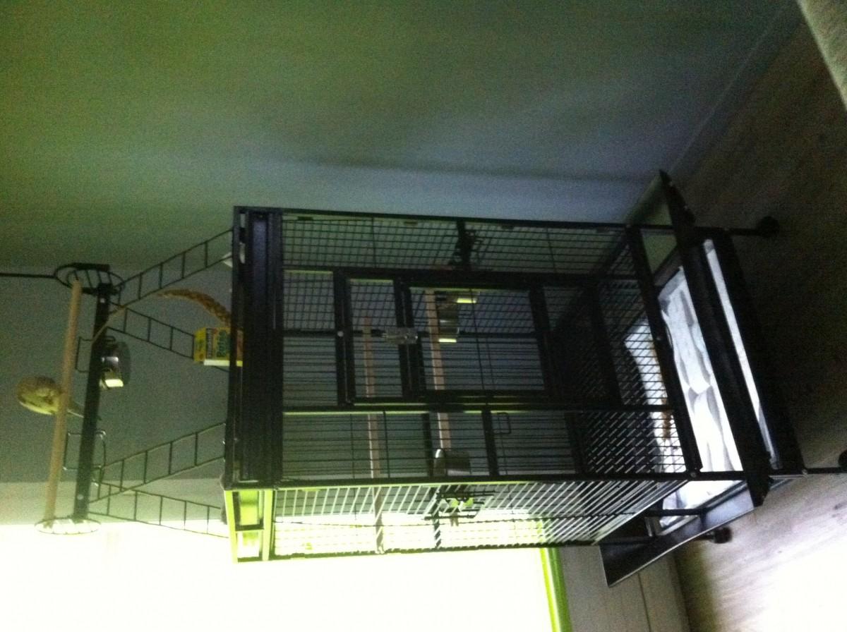 avis sur cage zolia youyou pour perroquet moyen et grande perruche 204cm. Black Bedroom Furniture Sets. Home Design Ideas