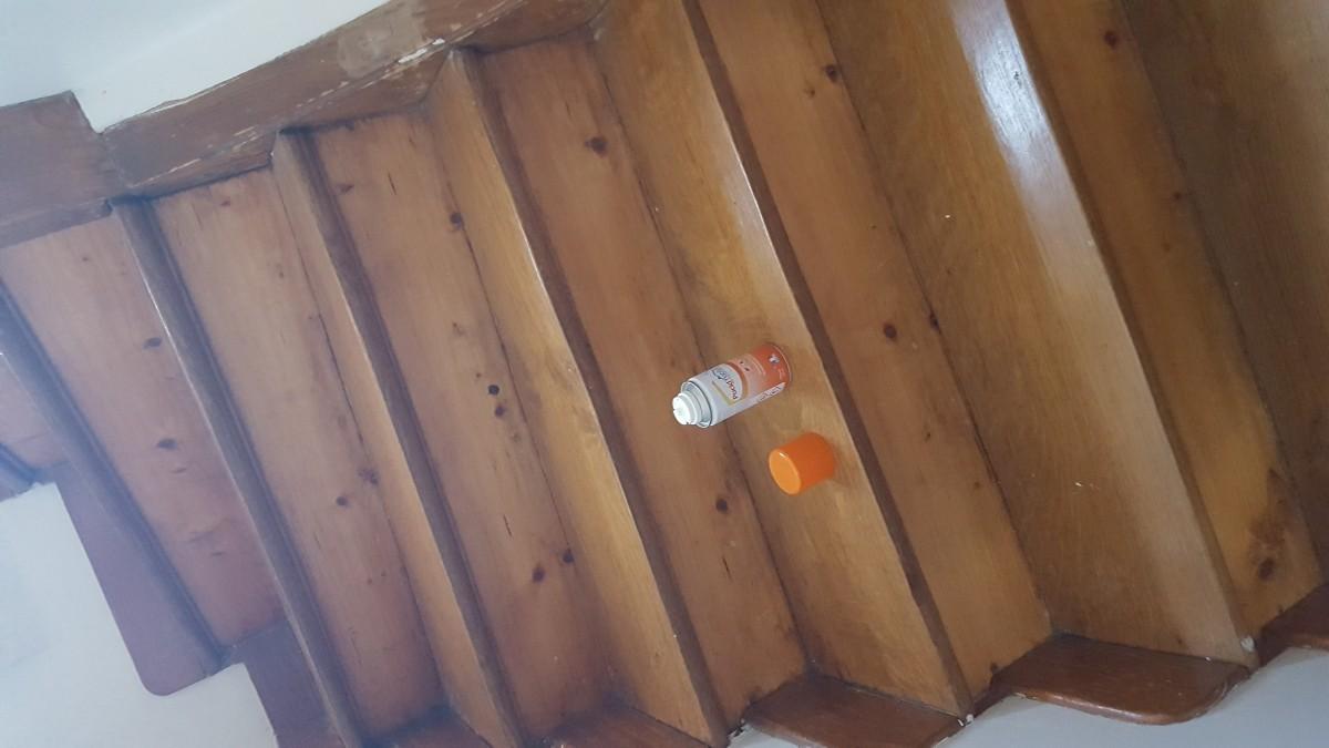 Produit antiparasitaire pour maison avie home for Anti puce pour la maison