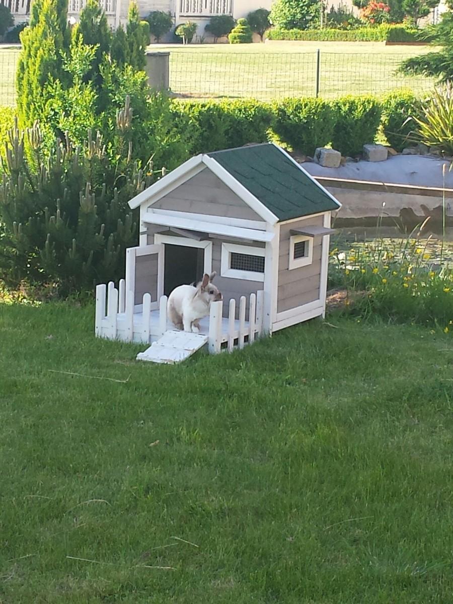 Clapier en bois lapins et rongeurs alora clapier lapin for Cabane pour lapin exterieur