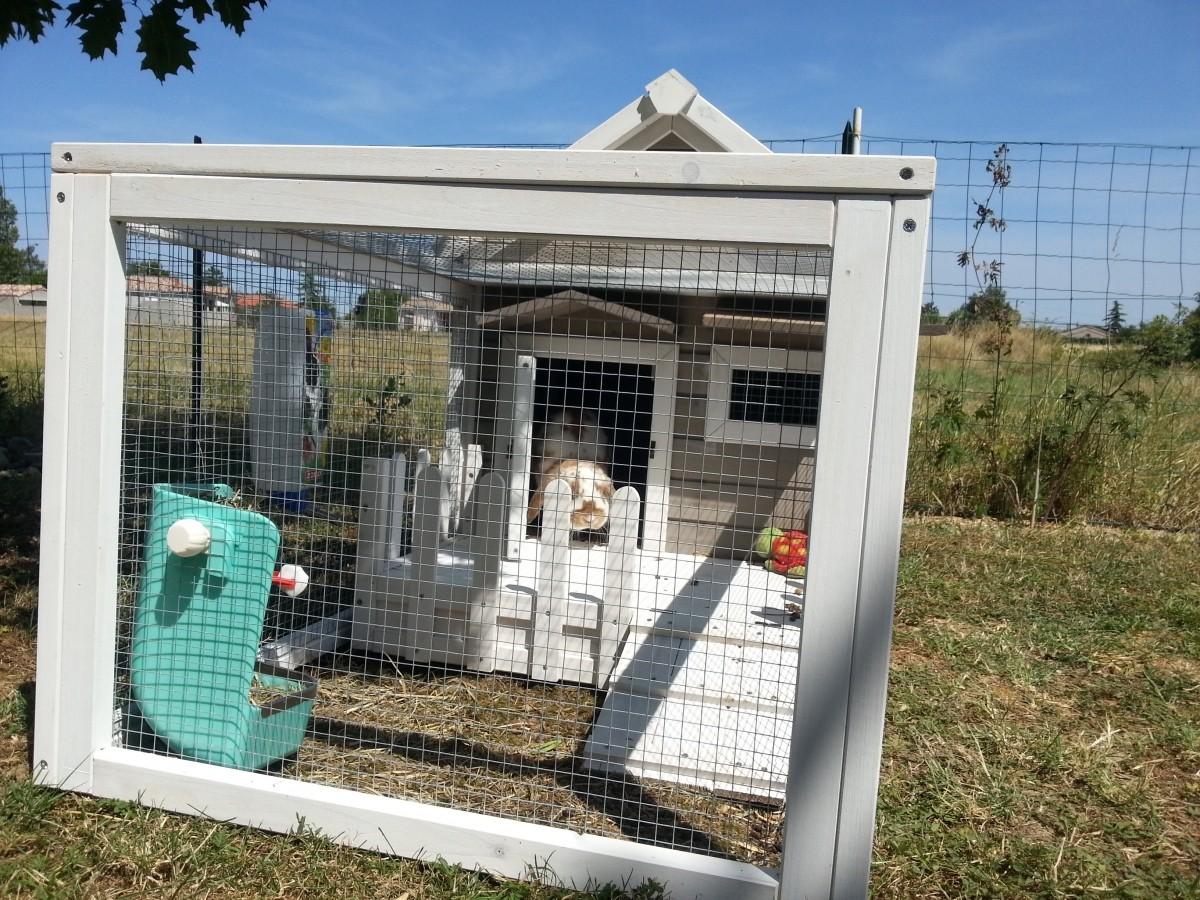 Avis sur clapier en bois lapins et rongeurs alora for Clapier lapin exterieur