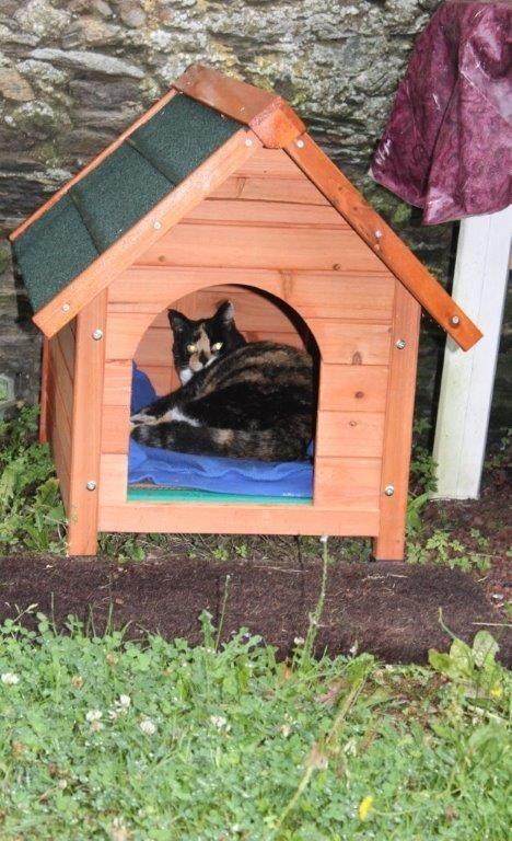 Niche d 39 ext rieur zolia cl o pour chats et chiens niche for Repulsif pour chat exterieur gratuit