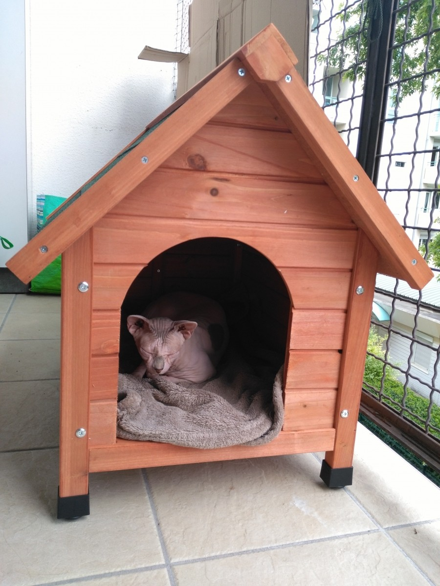 petite maison pour chat exterieur avie home. Black Bedroom Furniture Sets. Home Design Ideas