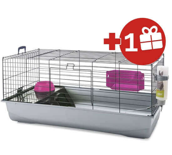 Cage lapin cage lapin nain et cage pour lapin pas cher for Cage exterieur pour lapin pas cher