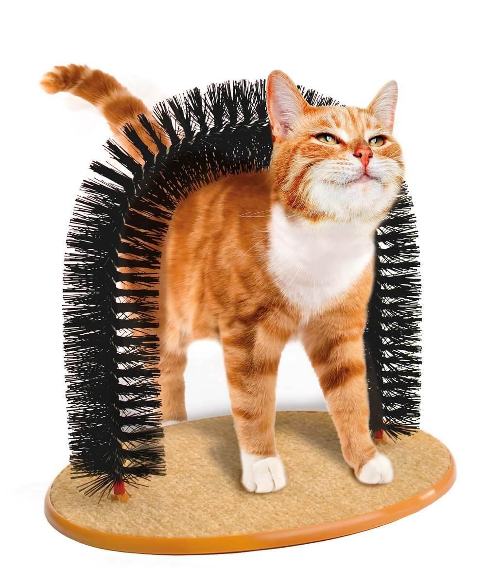 Arbre chat pas cher design ou geant - Arbre a chat design pas cher ...