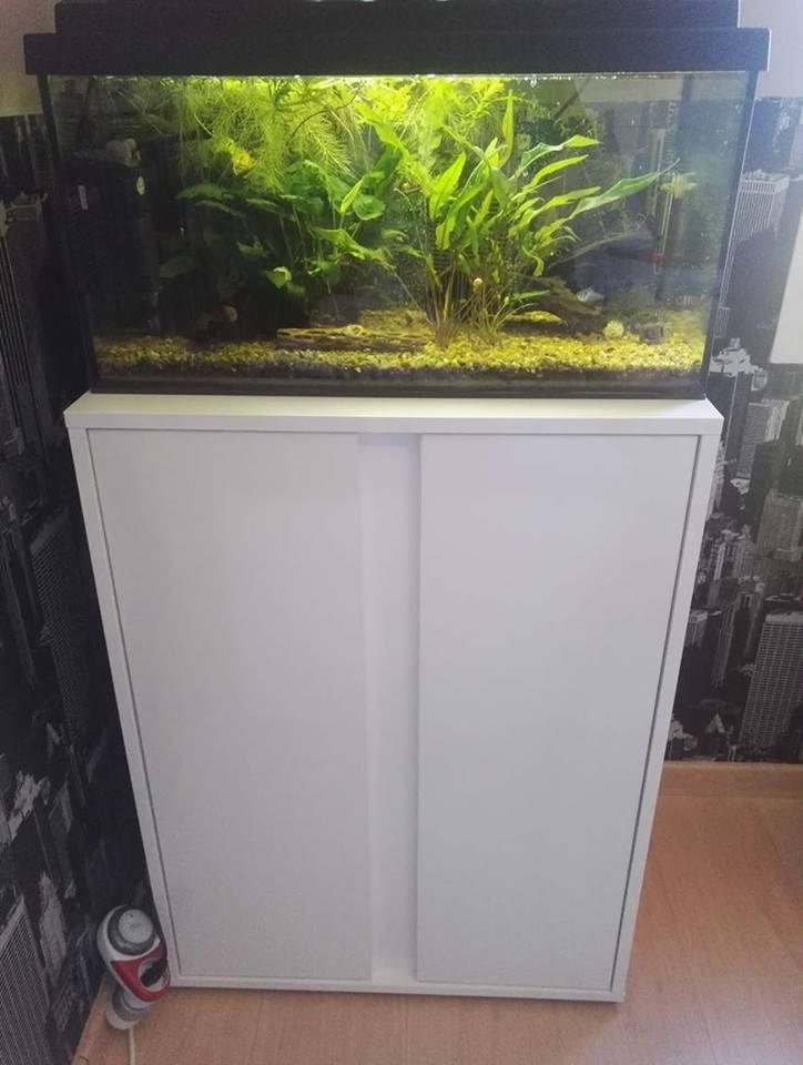 meuble blanc pour aquarium elegance expert aquarium et meuble. Black Bedroom Furniture Sets. Home Design Ideas