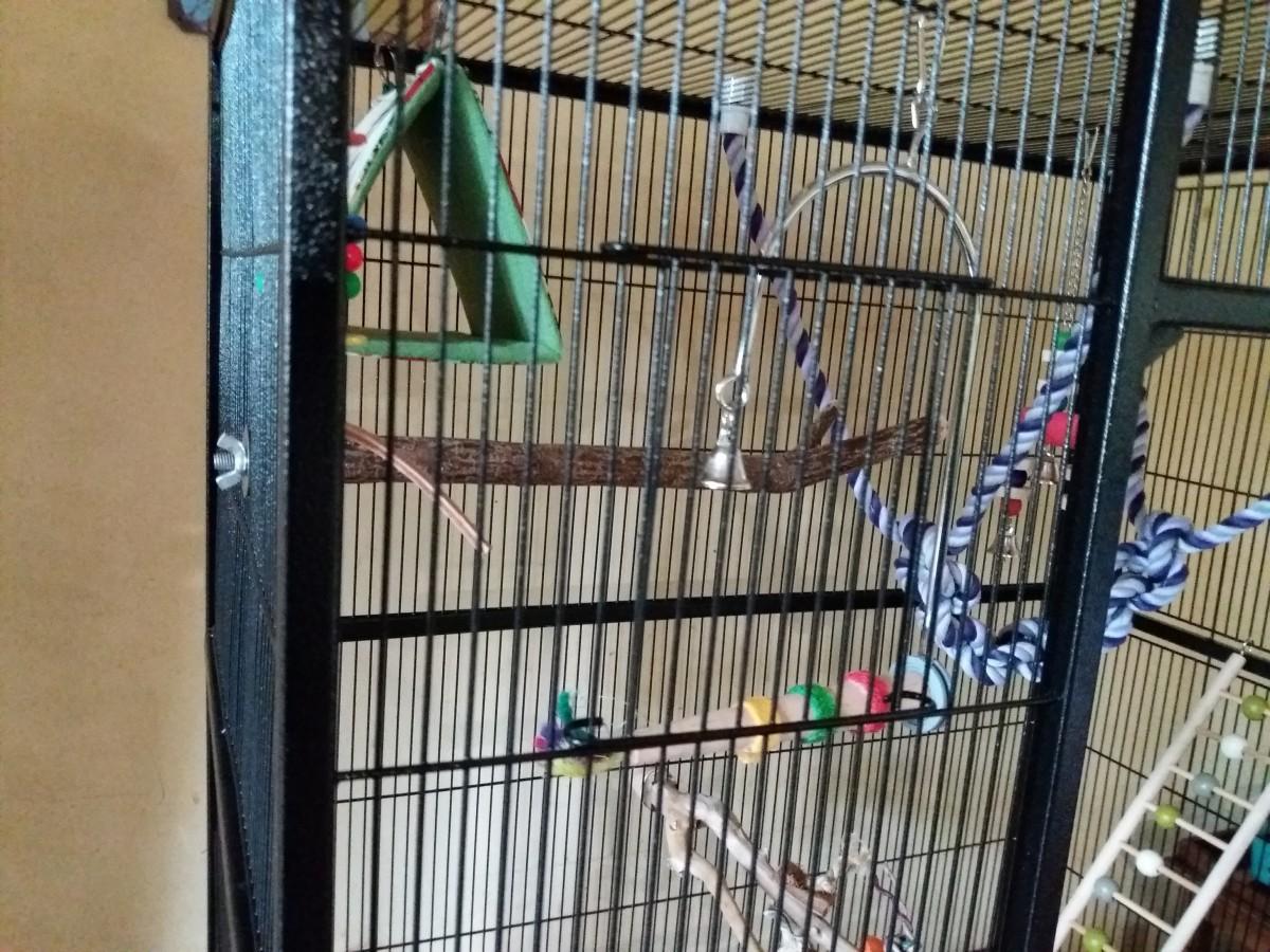 cage zolia conura pour perruches et petits perroquets cage perroquet. Black Bedroom Furniture Sets. Home Design Ideas