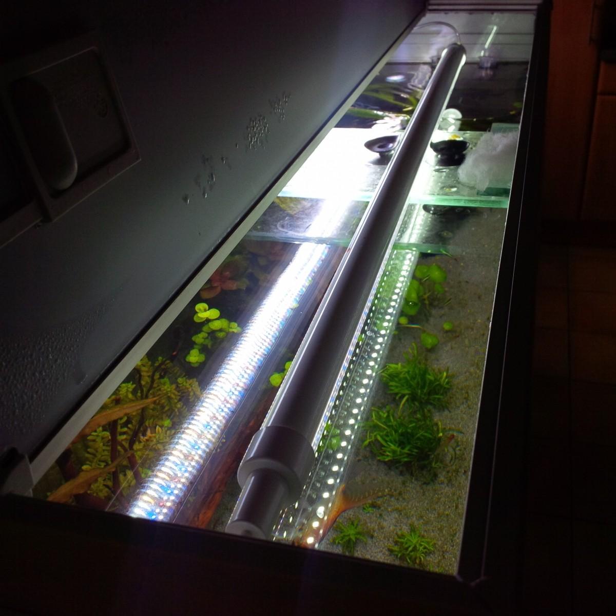 tube supraled 6500k adaptable sur rampe t8 et t5 eclairage led. Black Bedroom Furniture Sets. Home Design Ideas