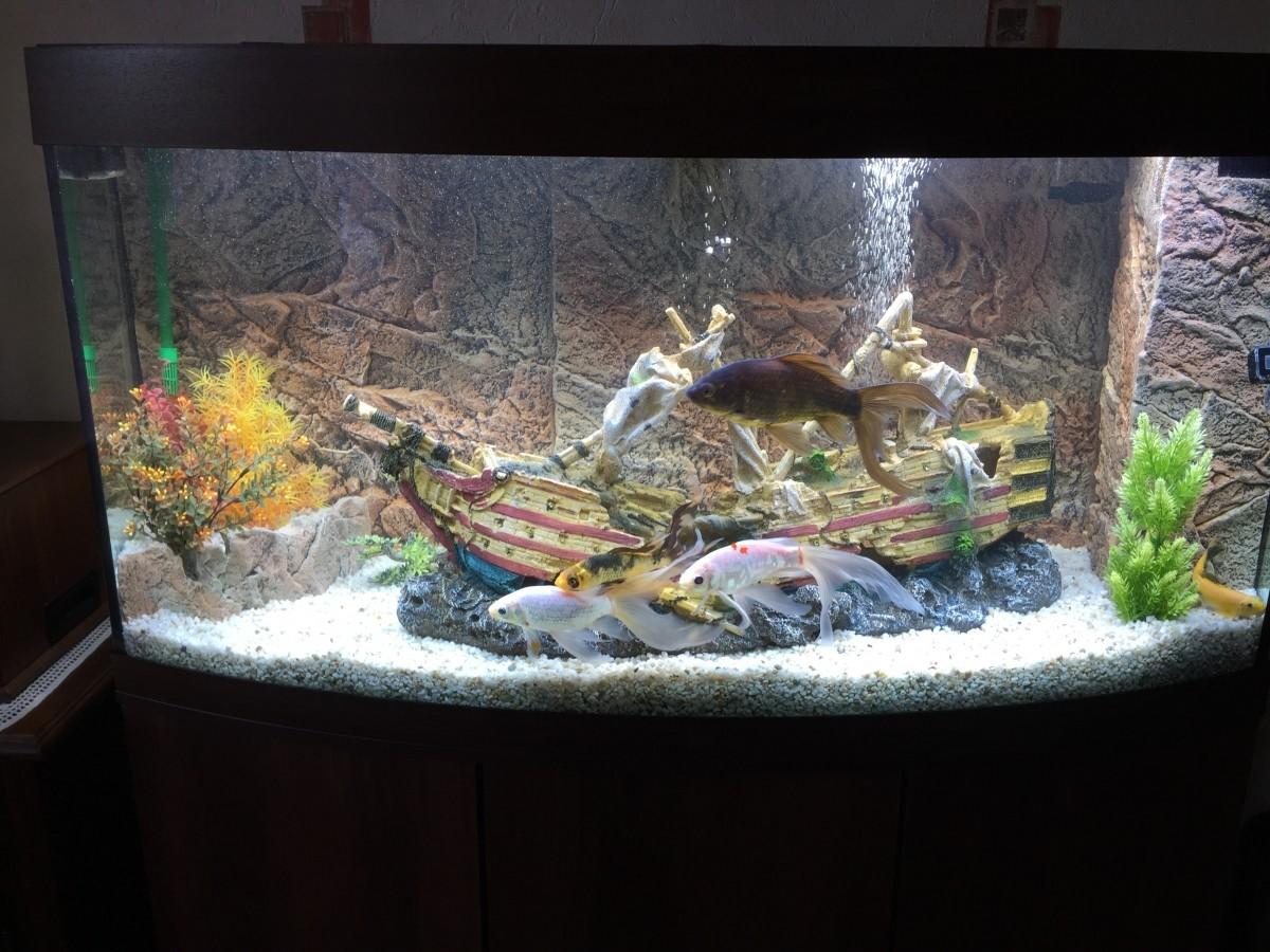 Epave de bateau gall on xxl d cor fantaisie - Decoration pour aquarium ...