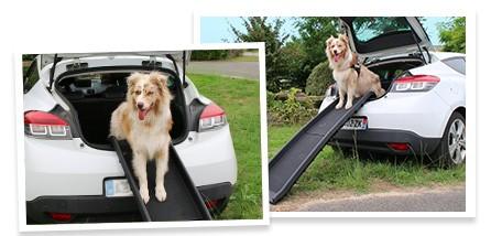 rampe d 39 acc s doggy pass pour chien accessoires voiture chien. Black Bedroom Furniture Sets. Home Design Ideas