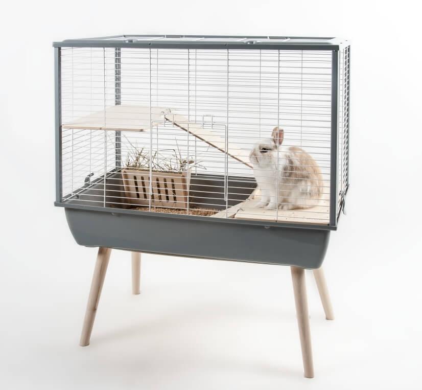 cage rongeur. Black Bedroom Furniture Sets. Home Design Ideas