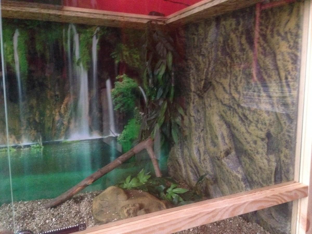 Fond d cor en relief exo terra d coration - Decor fond terrarium desertique ...
