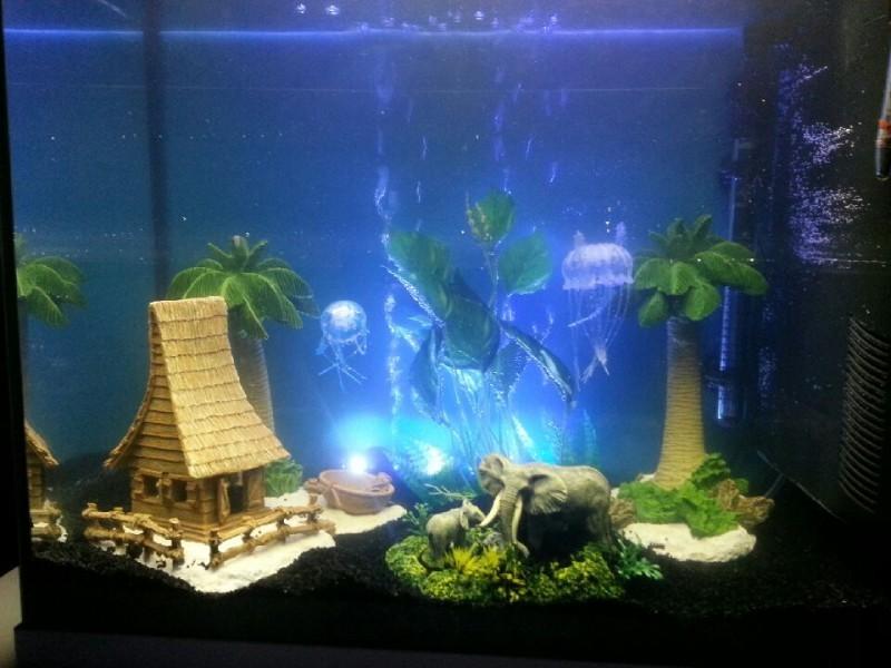 Maison cocotier en r sine d cor fantaisie for Aquarium a la maison