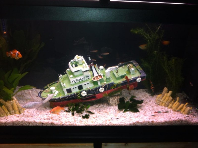 Decoration Aquarium Epave