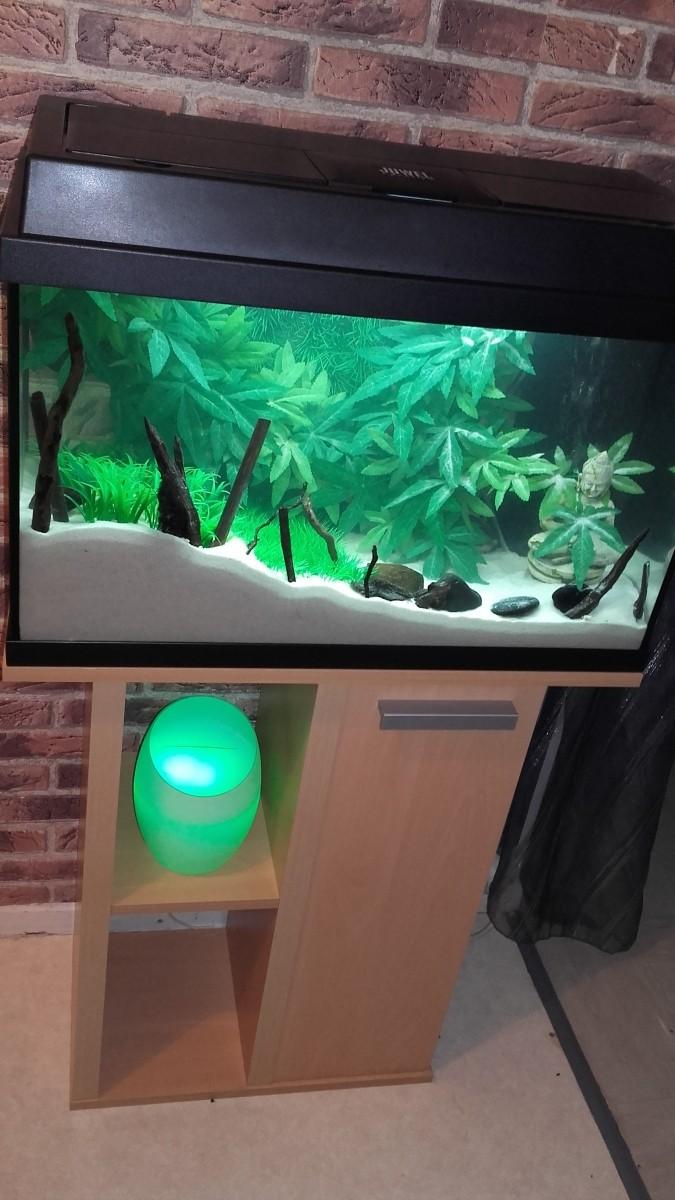 Plant mat 1 plante artificielle pour aquarium plantes artificielles pour aquariums - Poser de la pelouse artificielle ...