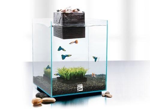 Je me lance nanolife 30l for Petit aquarium