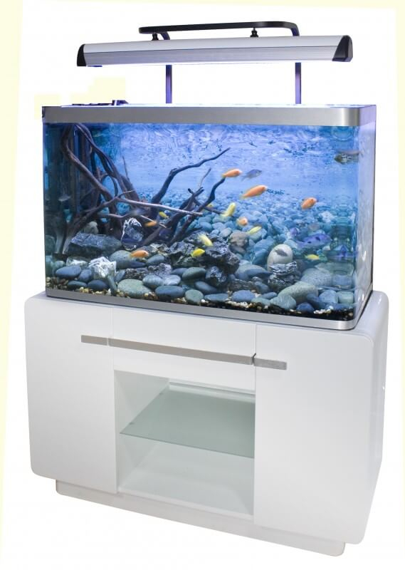 Aquarium osaka 260 glossy blanc 244l avec meuble for Aquarium osaka 260