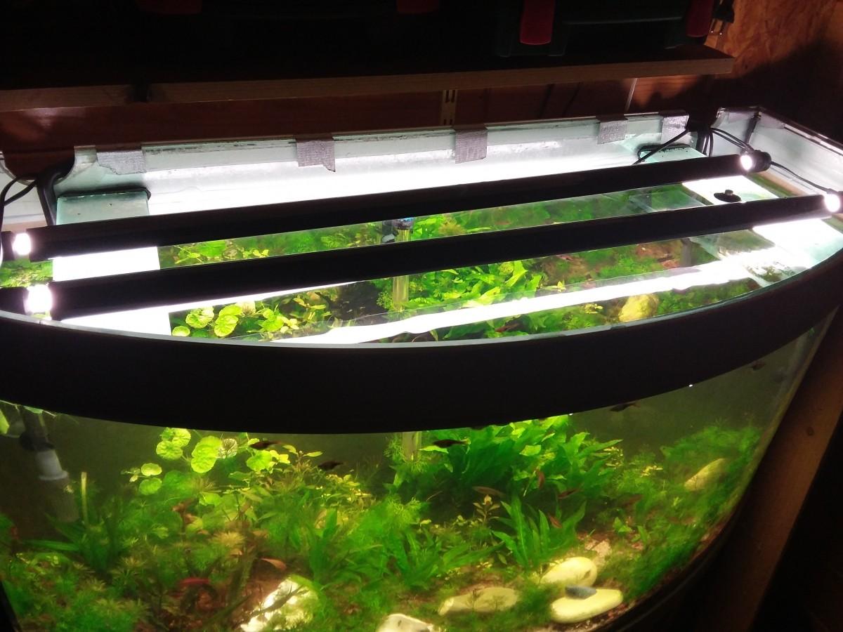 Syst me d 39 clairage glomat t5 pour 2 tubes ballasts et for Tube neon aquarium