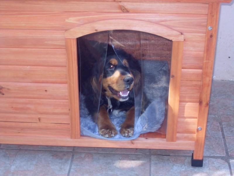Niche à Toit Plat Pour Chien Natura Niche - Porte pour chien