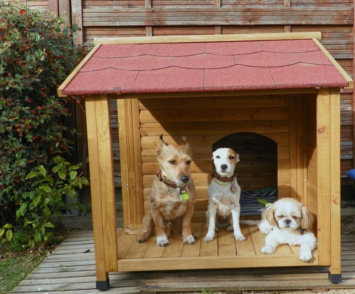 Niche pour chien avec terrasse natura niche for Niche exterieure pour chien